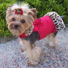 Winter Coat - Red-Winter Coat - Red