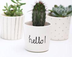 Cactus pot   Etsy