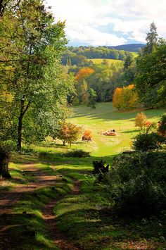 Winkworth Arboretum, located in Surrey, England