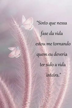 Que essa frase te motive a ir mais longe! Você consegue, acredite!!! #foco #força e #fé Motivational Phrases, Inspirational Quotes, Story Instagram, Spiritual Messages, Just Believe, Good Morning Good Night, Beauty Quotes, Texts, Positivity