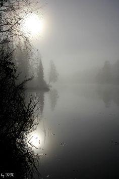 Misty (Norway) by Kari Meijers