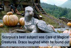 Scorpius is the Sirius Black of his family