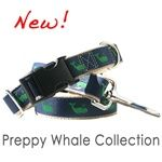 Preppy Whale Dog Collar - My favorite and made in the USA!