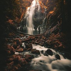 Be Visually Inspired! 📷 by: @jude allen #artofvisuals #aov #bevisuallyinspired! Location: Proxy Falls —————————————————————— New preset packs added to the store ever Tuesday from amazing artists within the community! —————————————————————— AOV Academy is now live, head over to www.aovacademy.com to sign up today! —————————————————————— 👉🏼Artofvisuals.com👈🏼