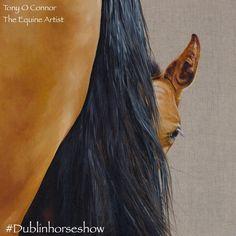 'Peekaboo' by Tony O'Connor Equine Art Fine Art Giclee Prints available