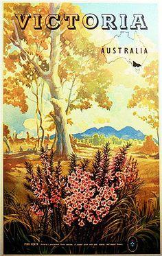 Art Print: Victoria Australia - Pink Heath Flower - Floral Emblem of Victoria by Vernon Jones : Posters Australia, Victoria Art, Retro Poster, Retro Ads, Australian Vintage, Decoupage, Victoria Australia, Australia Travel, Melbourne Australia
