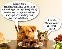 Pies i kot kradną mięso ze stołu, szybka matematyka z moich obliczeń wynika ze jednak warto Weekend Humor, Psy, Funny Mems, Old Memes, Good Mood, Best Memes, Funny Animals, Haha, I Am Awesome