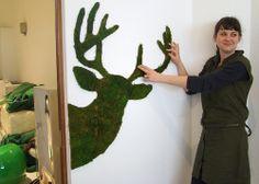 D&A Edina Tokodi installing moss deer - Moss graffiti