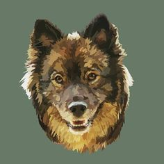 Keela the Finnish Lapphund is looking good on Pack. Your Dog, Facebook, Digital, Drawings, Cats, Illustration, Life, Animals, Gatos