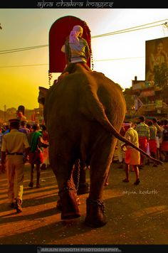 Paarth's Cosmos & The Aajna Chakra: Chalissery Pooram