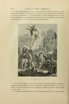 t.1:text - Voyage d'exploration en Indo-Chine : - Biodiversity Heritage Library