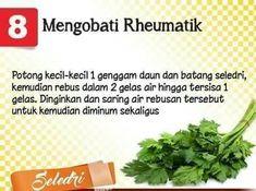 Obat herbal rematik Healthy Juices, Healthy Drinks, Healthy Habits, Healthy Tips, Natural Medicine, Herbal Medicine, Herb Recipes, Natural Beauty Tips, Health Education