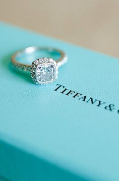 Every girl wants a Tiffany ring and its true. Founded in 1837 Tiffany  Co. is the worlds premier jewelry and specialty retailer which introduced the ultimate symbol of true love. The following brillia...