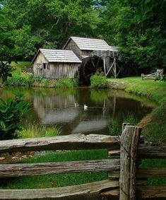 Pond... farm... beautiful.