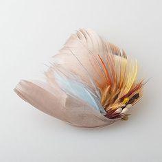 「PHILIP」 summer2016 カラフルな羽根のクリップ、新色です! #hairaccessories #hair #hairclip #feather #羽 #colourful #pop #カラフル #ヘアアクセサリー #headdress #headpiece #handmade #ハンドメイド #madeinjapan #hasascale #mioa