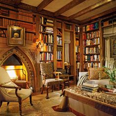 Home library complete with fire