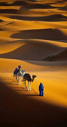 Golden Morocco , from Iryna