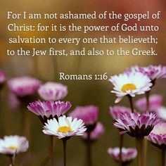 """Romans 1:16: """"For I am not ashamed of the gospel of Christ: for it is the power of God unto salvation to every one that believeth; to the Jew first, and also to the Greek."""" KJV"""