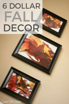 This is so easy and will bring a warm fall feeling into any room! Easy Fall Decor For 6 Dollars #Fall #falldecor