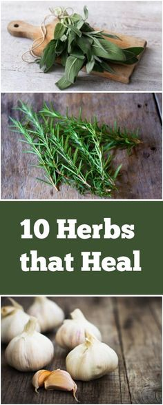 These are some great herbs you can grow to have natural healing remedies!
