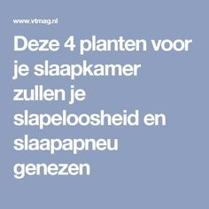 Deze 4 planten voor je slaapkamer zullen je slapeloosheid en slaapapneu genezen Health And Beauty, Health And Wellness, Health Tips, Health Fitness, Norman, Cosy Room, Spiritual Health, How To Know, Housekeeping