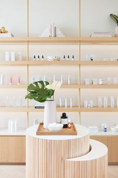 Down-lit display shelves, brass accents, and (of course) a palm or two. We'd say this retail concept by is a… Dark Interiors, Shop Interiors, Tienda Natural, Clinic Interior Design, Clinic Design, Retail Interior, Interior Shop, Boutique Interior, Boutique Spa