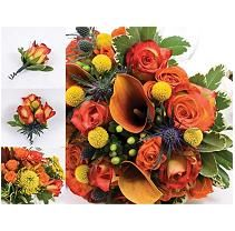 Earth Tone 23 pc. Sam'sClub $588.  Bridal Bouquet, 4 BM Bouquets, TossBouquet, 6 Bout., 4 Corsages, 6 Centerpieces, Petals.  BRIDE: 9 Bi-color Roses, 4 Mango MiniCallaLily,5 Orng.Rose,3 Blue Eryngium,5 Green Hypericum,4 Var. Pittosporum, 9 Yellow Crespidia.  BRIDESMAID: 3 Yellow Pincushion, 6 Yellow/red Roses,3 Orng.Roses, 3 Blue Eryngium, 4 Blue Eucalyptus.  CENTERPIECES:  2 Yellow Pincushion,  4 Bi-color Roses, 2 Safari Sunset, 3 Yellow Yarrow, 3 Orng Rose, 3 Blue Eucalyptus, 4…