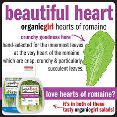 romaine #organicgirl #romaine