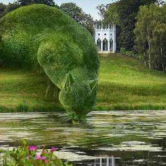Foto em dia de céu claro. Em um canto de um enorme jardim próximo a um rio, à esquerda, sobre a relva, um correr de árvores podadas em forma de um gigantesco gato, curvado, com a cabeça baixa, sorvendo a água. Ao fundo, à direita, um coreto branco, circular em formato de castelo, ao redor, um bosque. No canto inferior esquerdo, plantas aquáticas com flores miúdas na cor pink e ao lado, parte do reflexo do coreto sobre a superfície do rio.