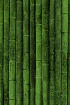 Текстуры, green style, обои, бамбук, texture wallpapers 640 x Go Green, Green Colors, Green Shot, Green Bean, Jade Green, Textures Patterns, Color Patterns, Bamboo Seeds, Black Bamboo