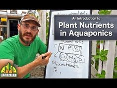 Hydroponics Gardening Plant Nutrients for Aquaponics - Aquaponics Greenhouse, Aquaponics Fish, Fish Farming, Hydroponics System, Hydroponic Gardening, Organic Gardening, Indoor Aquaponics, Nutrition, Plant Growth