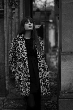 feline style - alma jodorowsky