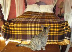 Pearce Wool Plaid Blanket by heydarlin on Etsy, $52.00