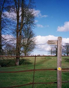Follow the Cotswold Way or one of the many other footpaths in the area.