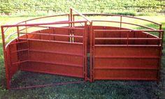 Cattle crowding tub! #farm #cattle #farmandranch