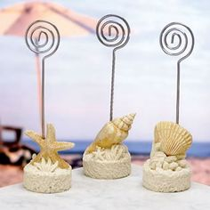 Sea Shell Place Card Holders