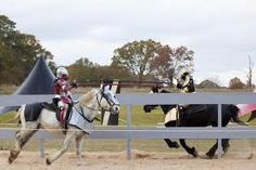 The history of jousting is fascinating! #justjoustit http://www.squidoo.com/sport-of-jousting