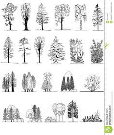 Landscape Architecture Plan Trees cad blocks - tree pack 04 | first in architecture | interior