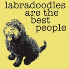 Labradoodles are the best people