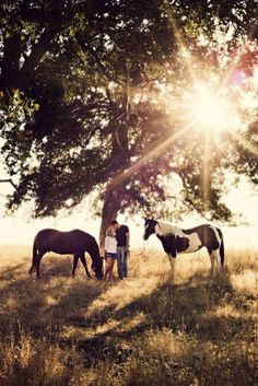 The sun and the horses is the perfect combination.