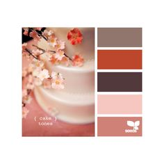 Design Seeds®: For All Who Love Color   Search ❤ liked on Polyvore