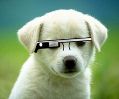 If You Pre-Ordered Google Glass, Here's What To Expect Once Your Number IsCalled