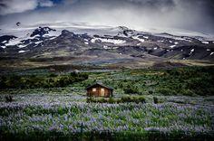 Icelandic Mountain Meadow Retreat - solitary houses
