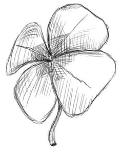 Gallery For > Cool Four Leaf Clover Drawing