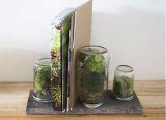 12 Tiny Terrariums You Can DIY For Earthy Wedding Centerpieces: #11. The Book Ends