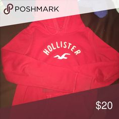 Hollister hoodie Hollister hoodie medium but fits like a small Hollister Other
