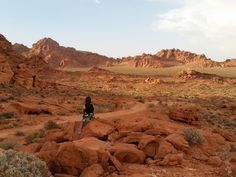 Valley of Fire State Park, USA #roadtrip