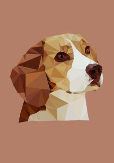 Beagle minimalista