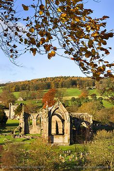 So lucky to have gotten the chance to visit here.  Bolton Abbey in Autumn, UK founded in 1120 by the Augustinian order