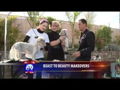 Pet Grooming San Diego: Best dog grooming, pet boutique, and dog bakery bar in San Diego, California.